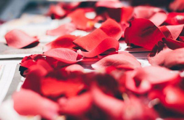 Conjuros y hechizos con pétalos de rosas